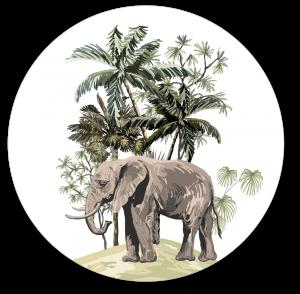 Muurcirkel safari olifant